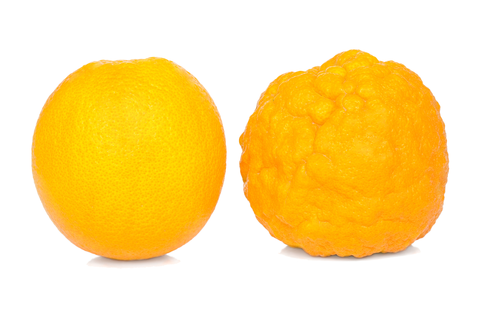 narancs. bőr